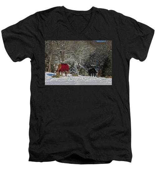 Eating Hay In The Snow Men's V-Neck T-Shirt by Denise Romano