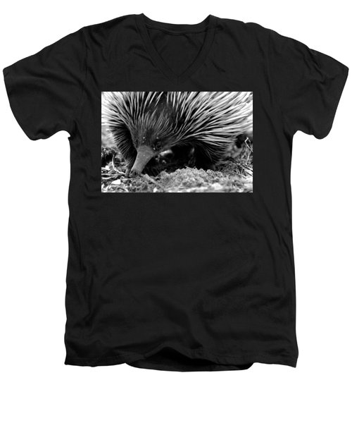 Echidna Men's V-Neck T-Shirt by Miroslava Jurcik