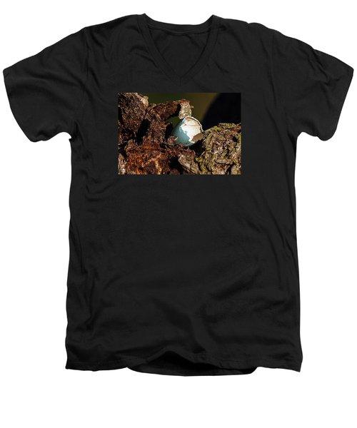 Eggs Of Nature 1 Men's V-Neck T-Shirt by David Lester