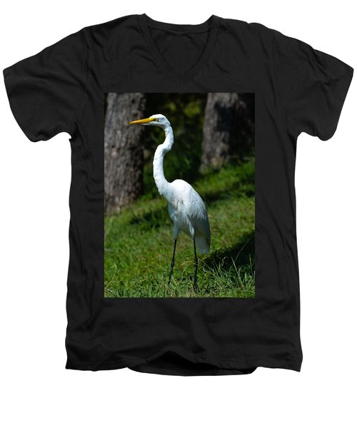 Egret - Full Length Men's V-Neck T-Shirt