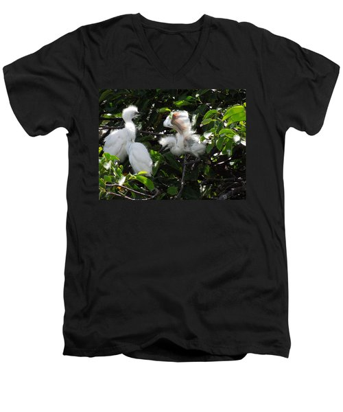 Egret Chicks Men's V-Neck T-Shirt