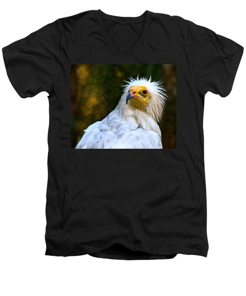 Egyptian Vulture Men's V-Neck T-Shirt