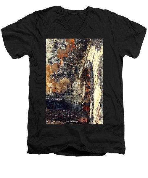 El Morro Arch Men's V-Neck T-Shirt