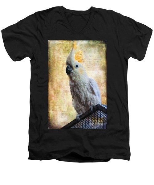 Elegant Lady Men's V-Neck T-Shirt