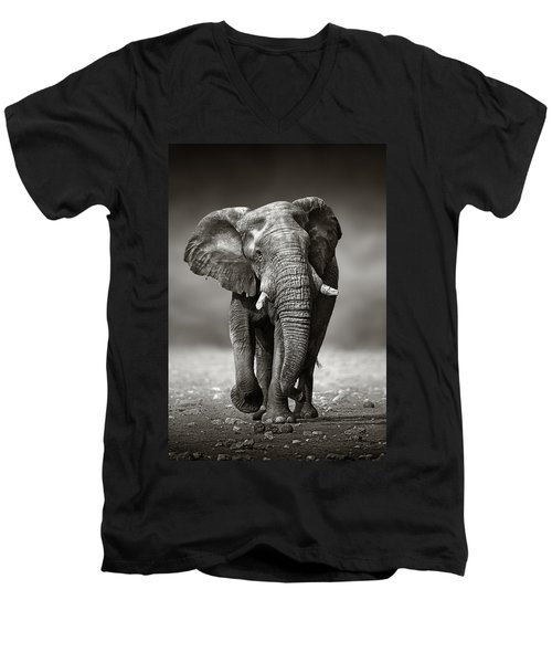 Elephant Approach From The Front Men's V-Neck T-Shirt by Johan Swanepoel