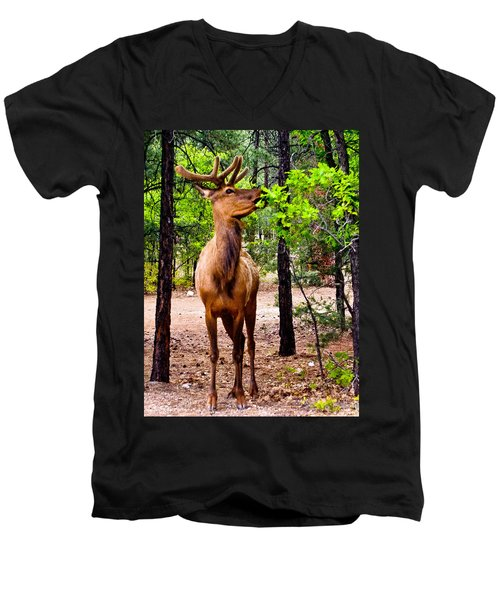 Men's V-Neck T-Shirt featuring the photograph Elk - Mather Grand Canyon by Bob and Nadine Johnston