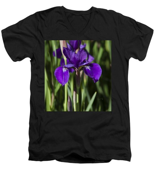 Eloquent Iris Men's V-Neck T-Shirt