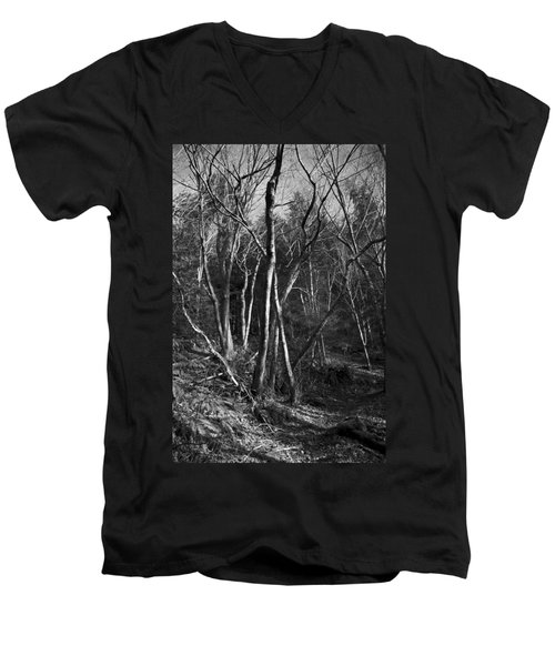 Enchanted Forest Men's V-Neck T-Shirt by Yulia Kazansky