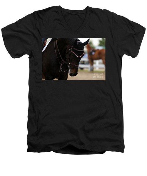 Equine Concentration Men's V-Neck T-Shirt