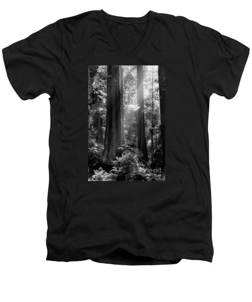 Evening Light Men's V-Neck T-Shirt by Mark Alder