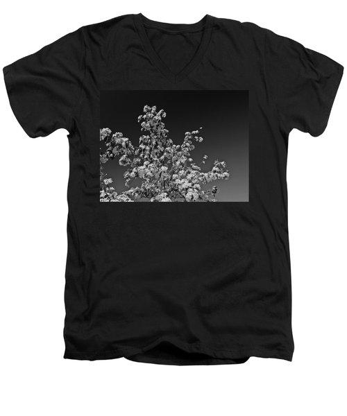 Evergreen Pear Bw Men's V-Neck T-Shirt