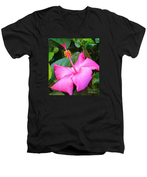 Exotic And Beautiful Flower In My Back Yard. Men's V-Neck T-Shirt