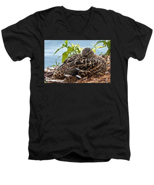 Men's V-Neck T-Shirt featuring the photograph Eye Watching You by Kate Brown