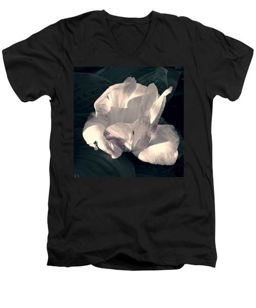 Men's V-Neck T-Shirt featuring the photograph Faded Beauty by Photographic Arts And Design Studio