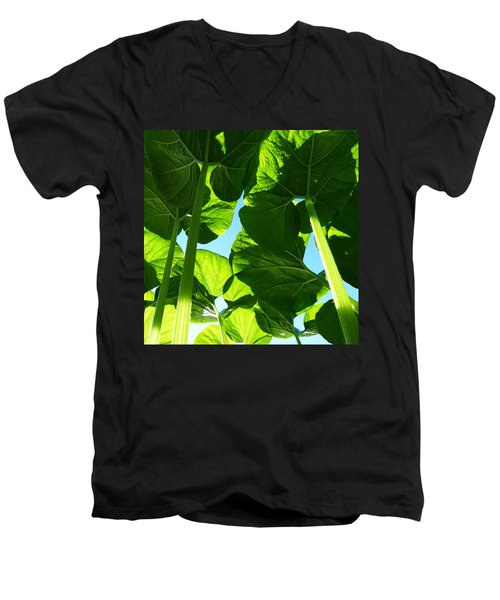 Faerie World Men's V-Neck T-Shirt