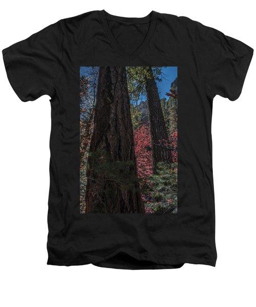 West Fork Perspective Men's V-Neck T-Shirt