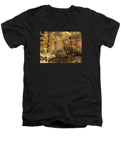 Fall Colors 6405 Men's V-Neck T-Shirt