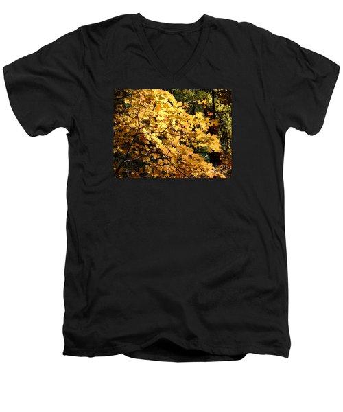 Fall Colors 6407 Men's V-Neck T-Shirt