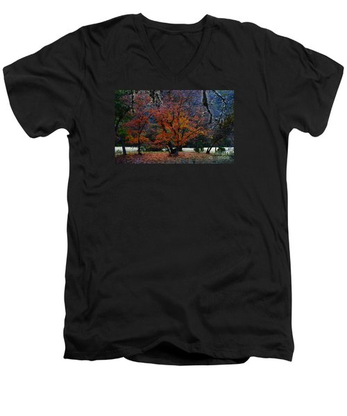 Fall Foliage At Lost Maples State Park  Men's V-Neck T-Shirt