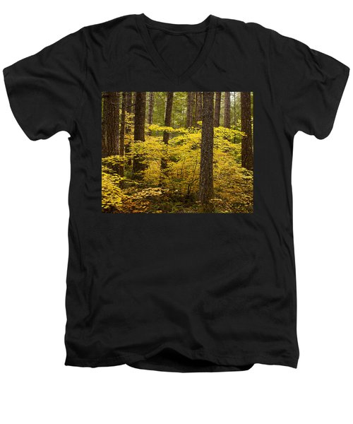 Men's V-Neck T-Shirt featuring the photograph Fall Foliage by Belinda Greb