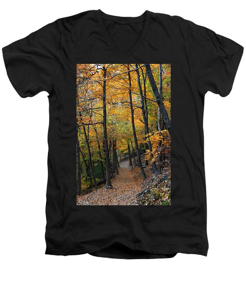 Fall Foliage Colors 03 Men's V-Neck T-Shirt