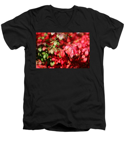 Fall Foliage Colors 10 Men's V-Neck T-Shirt