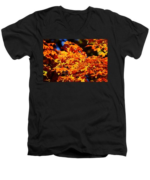 Fall Foliage Colors 16 Men's V-Neck T-Shirt