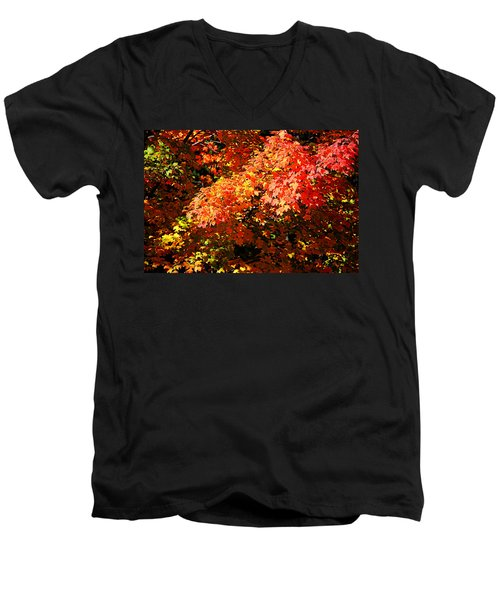 Fall Foliage Colors 21 Men's V-Neck T-Shirt