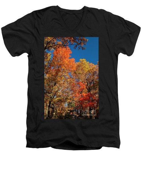 Fall Foliage Men's V-Neck T-Shirt by Patrick Shupert