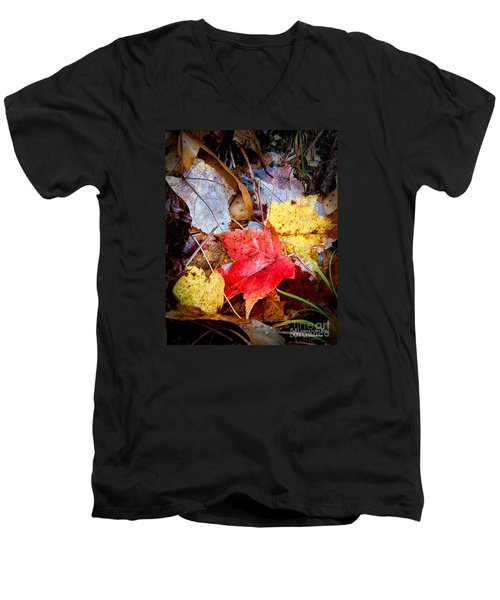 Men's V-Neck T-Shirt featuring the photograph Fall Leaves In The Rain by David Perry Lawrence