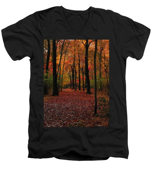 Men's V-Neck T-Shirt featuring the photograph Fall Path by Raymond Salani III