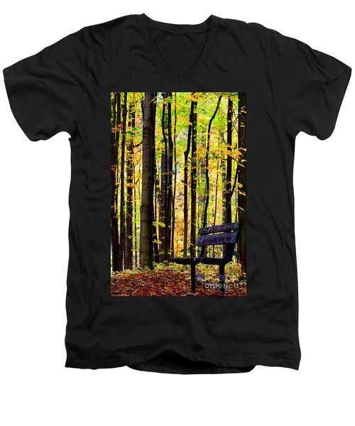 Fall Woods In Michigan Men's V-Neck T-Shirt