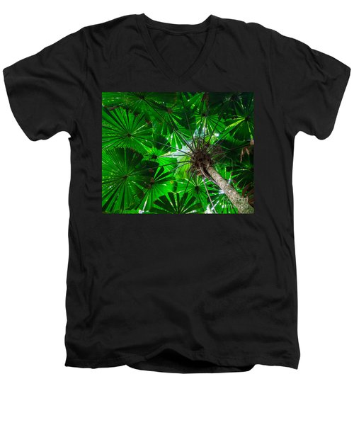 Men's V-Neck T-Shirt featuring the photograph Fan Palm Tree Of The Rainforest by Peta Thames