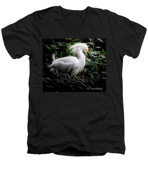 Fancy Feathers Men's V-Neck T-Shirt