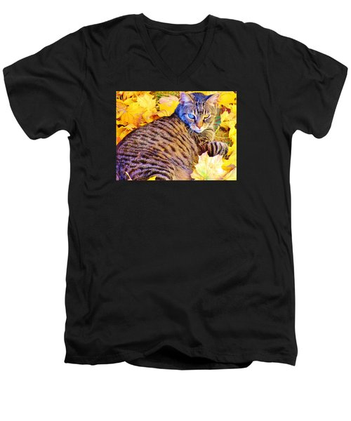 Men's V-Neck T-Shirt featuring the photograph Feeling Fall by Marilyn Diaz