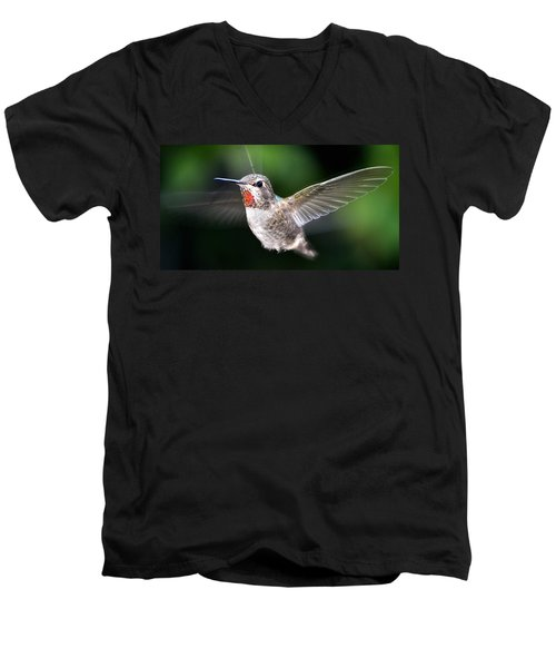 Men's V-Neck T-Shirt featuring the photograph Female Caliope Hummingbird In Flight by Jay Milo