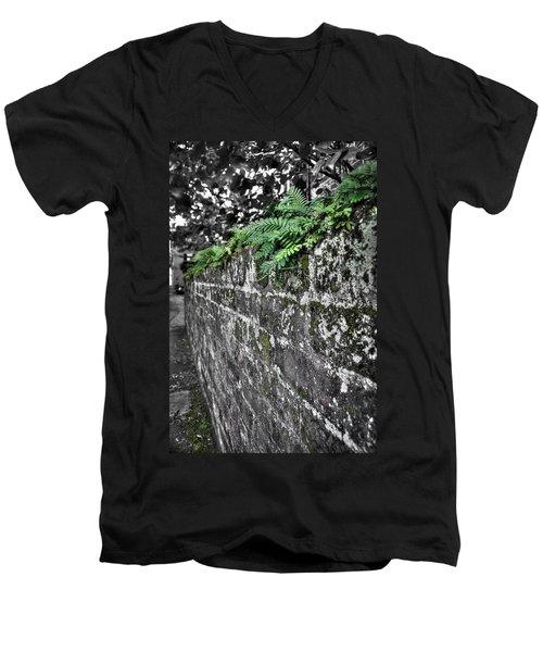 Ferns On Old Brick Wall Men's V-Neck T-Shirt