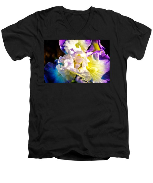 Fickle Iris  Men's V-Neck T-Shirt