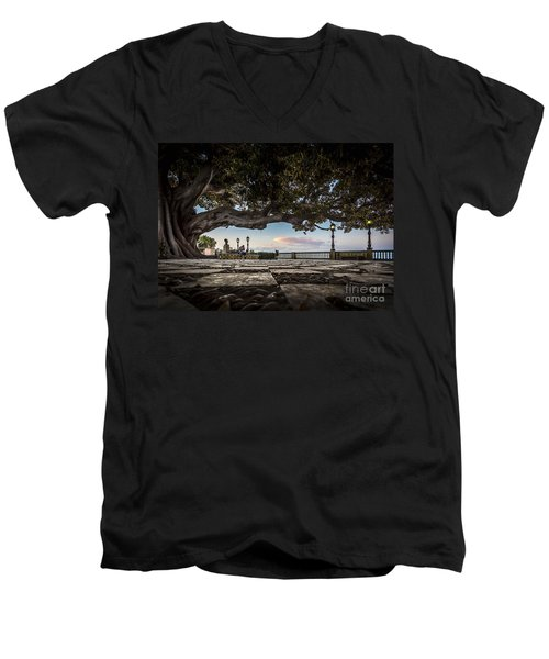 Ficus Magnonioide In The Alameda De Apodaca Cadiz Spain Men's V-Neck T-Shirt