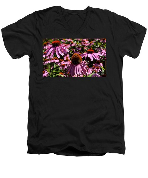 Field Of Echinaceas Men's V-Neck T-Shirt
