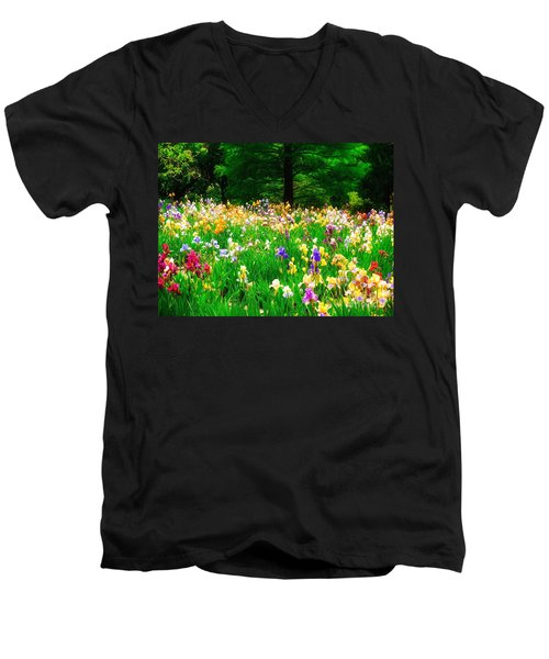 Field Of Iris Men's V-Neck T-Shirt