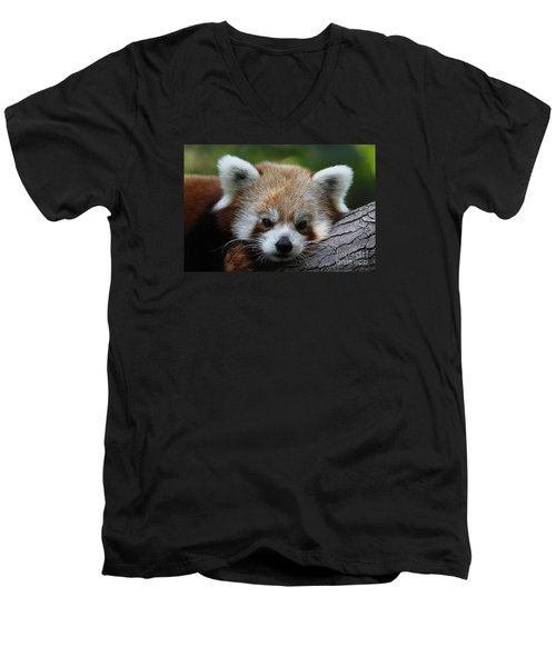 Men's V-Neck T-Shirt featuring the photograph Fire Fox by Judy Whitton