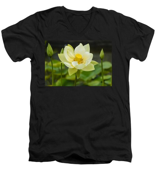 First To Bloom Men's V-Neck T-Shirt