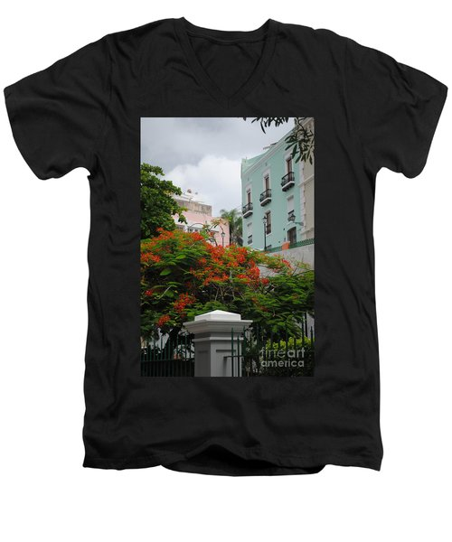 Flamboyan In Park Men's V-Neck T-Shirt