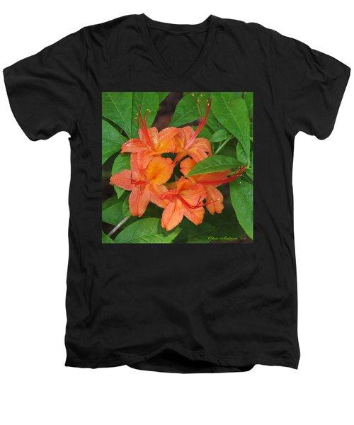 Flame Azalea Men's V-Neck T-Shirt by Chris Anderson