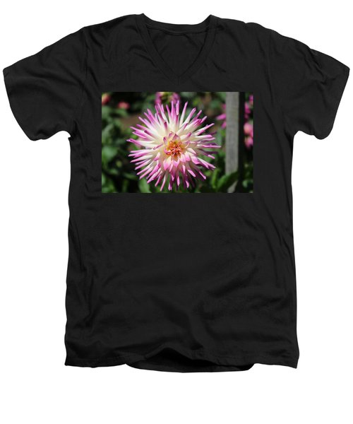 Floral Beauty 3  Men's V-Neck T-Shirt