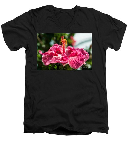 Flower Closeup Men's V-Neck T-Shirt