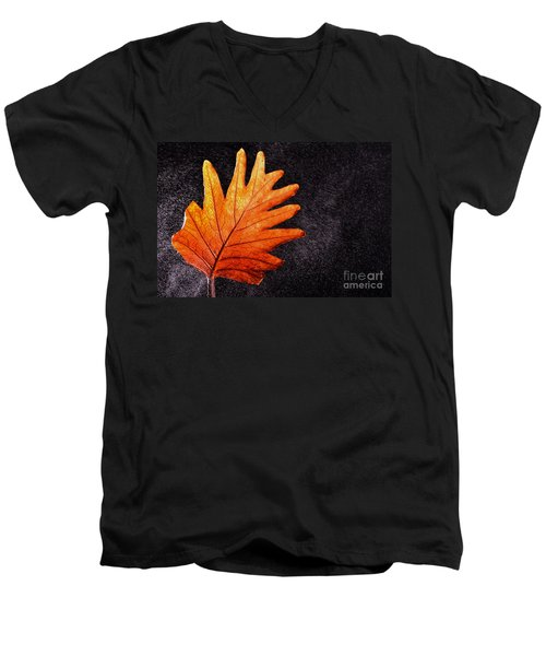 Flower Grows In Rain Men's V-Neck T-Shirt