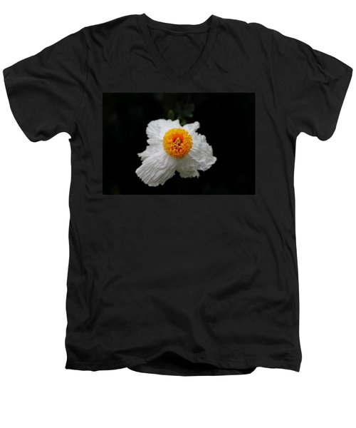 Flower Sunny Side Up Men's V-Neck T-Shirt