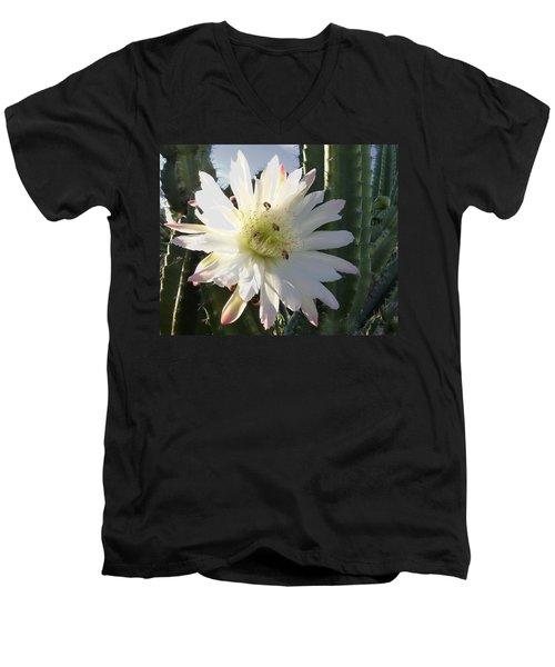 Men's V-Neck T-Shirt featuring the photograph Flowering Cactus 5 by Mariusz Kula
